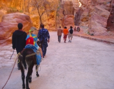 Petra on donkeys